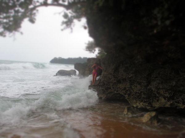 coral manzanillo