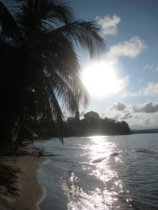 Sun Arrecife
