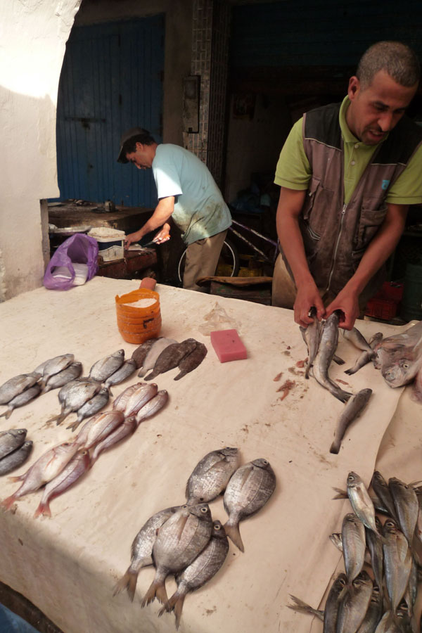 essaouira fish souk