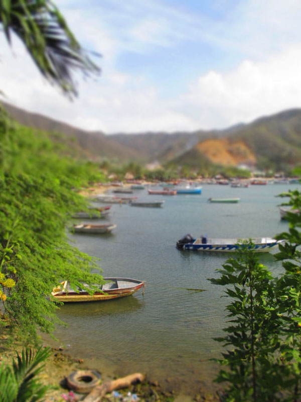 boats taganga