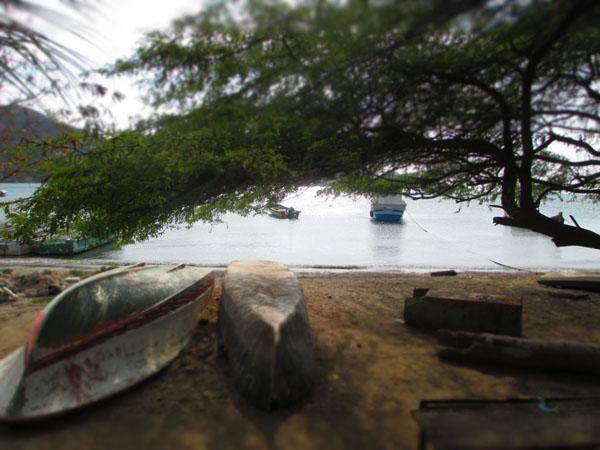 taganga boats