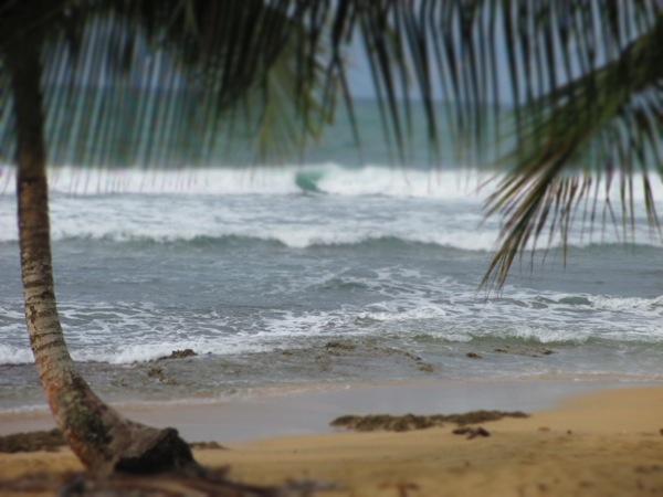 cocles beach