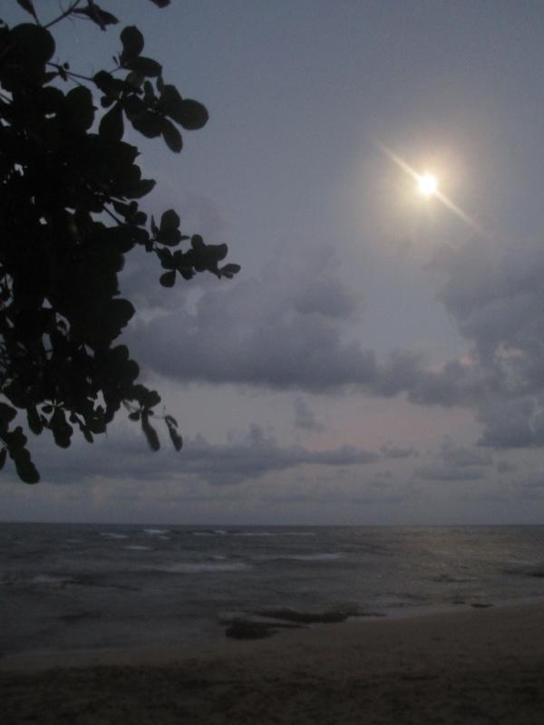 beach moon cocles