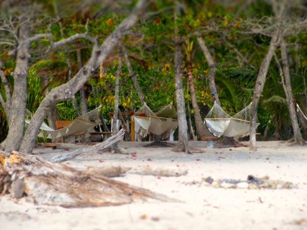 Santa Teresa hammocks