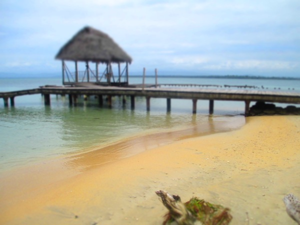 Starfish Beach Bocas del Drago