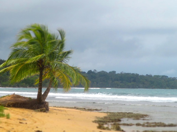 Playa Paunch Bocas